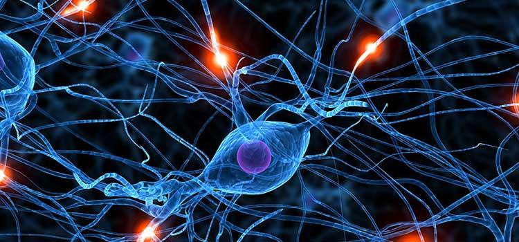 Cambio de paradigma en la comprensión de las adicciones y su manejo terapéutico