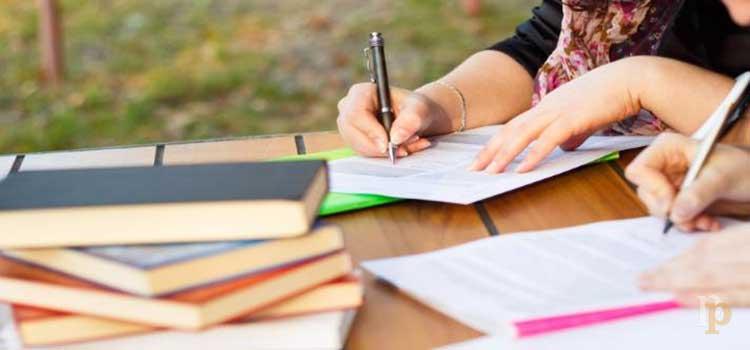 Educación, vocación y profesión