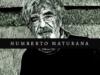 10 frases y reflexiones del filósofo chileno Humberto Maturana