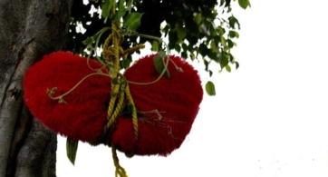 La metáfora como recurso para la terapia psicológica en infantes con cardiopatías congénitas