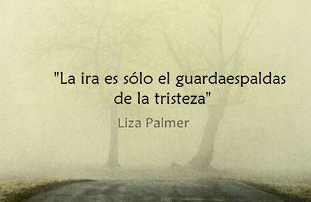 Frase Liza Palmer sobre la ira y la tristeza