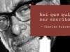 Chinasky y la historia de un cartero llamado Bukowski