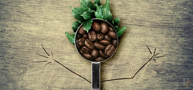 La borra del café | Amar lo amable no es amor