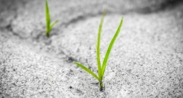 Soy, quiero, somos: Tres poemas para reflexionar | Defensa de la metáfora