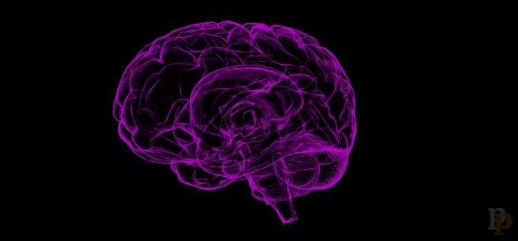 Epilepsia desde una perspectiva psicológica