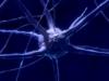 Epilepsia desde una perspectiva ontogenética