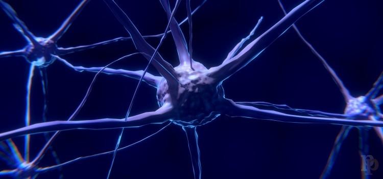 epilepsia-nervios